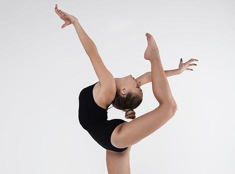 Homo flexibilus