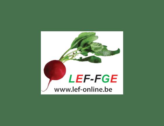 LEF-Online
