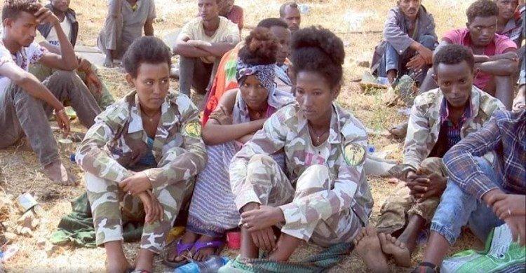 De einddagen van het TPLF-regime in Ethiopië… Het TPLF heeft zijn eigen graf gegraven