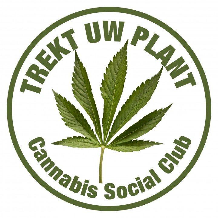 Gunst van de opschorting voor cannabis-vzw Trekt Uw Plant