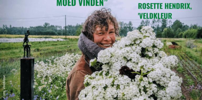 Rosette in de bloemen